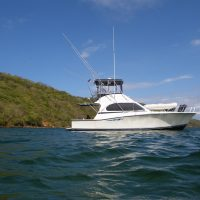 38 ft LUHRS TOURNAMENT